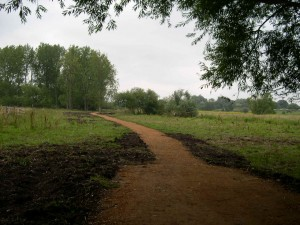 Marston Marshes Easy Access Path July 2011