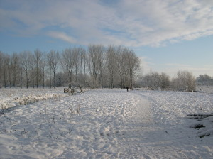 Snow on Marston Marshes 16th January