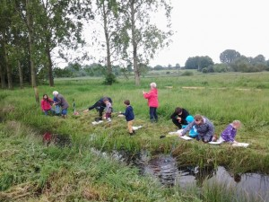 Dyke dipping May 2014